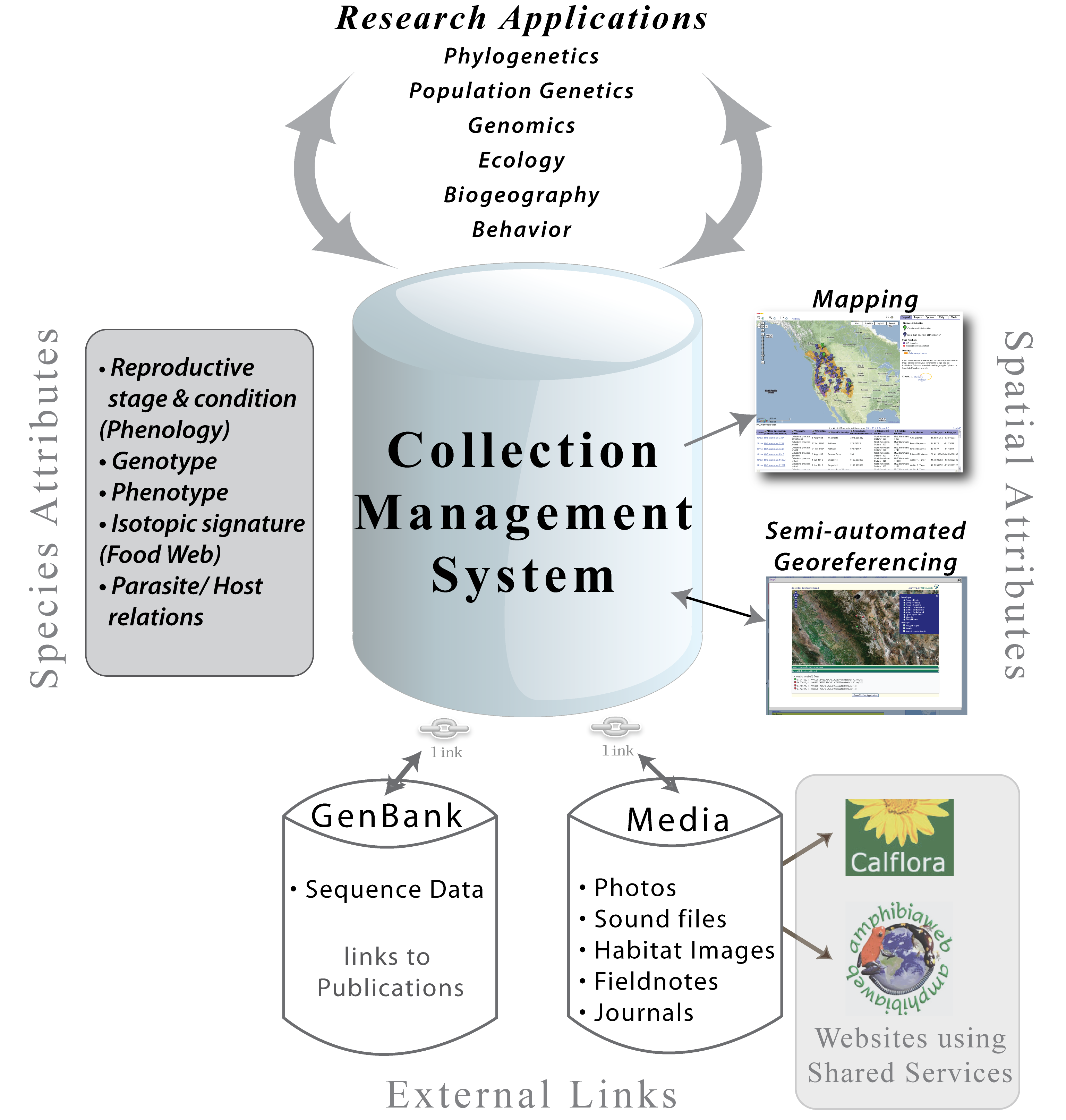 advanced information management Aim will help you create a web presence and e-commerce we support a wide range of specific business systems and critical it functions such as: technology support, project implementation, personalized coaching and training, vendor negotiations, operational efficiency in it process, and it budgeting / roi analysis and presentation development.